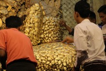 MANDALAY, La pagode Mahamuni, Collage quotidien des feuilles d'or